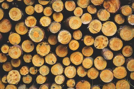 Food Honeycomb Spice #13250