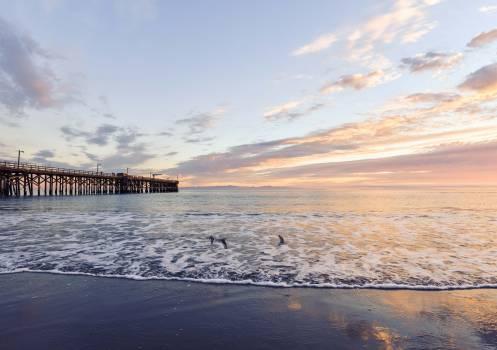 Sea Beach Ocean #13357