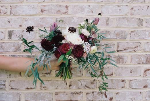 Design Flowers Flower #13375
