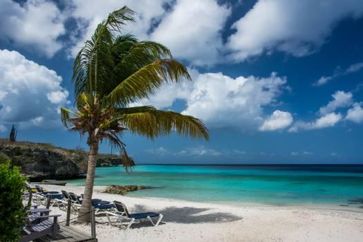 Beach Turquoise Island #13442