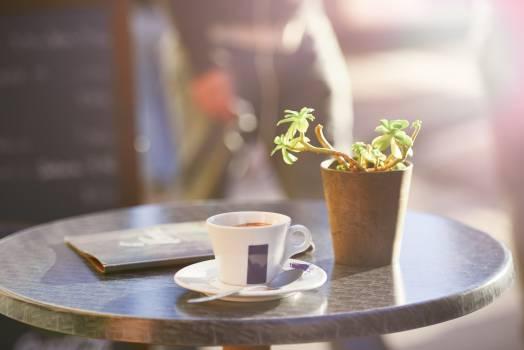 Cup Tea Drink #13443