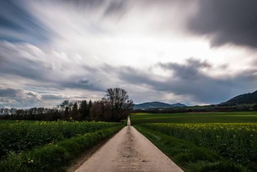 Sky Landscape Rural #135182