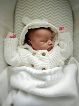 Bassinet Baby bed Furniture #135301