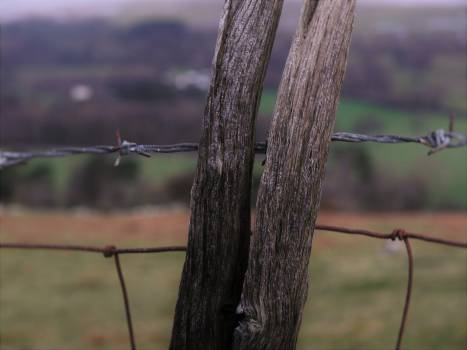 Branch Worm fence Rail fence #135409