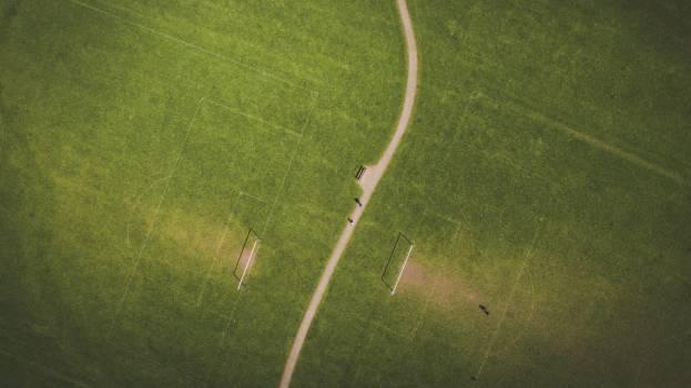 Grass Golf Sport Free Photo