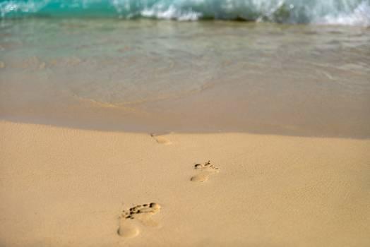 Sand Beach Dune #13660