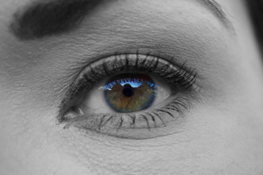 Eyebrow See Eye #13718