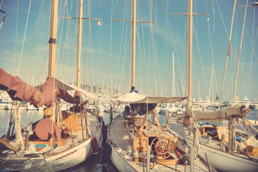 Sail Business Factory #14025