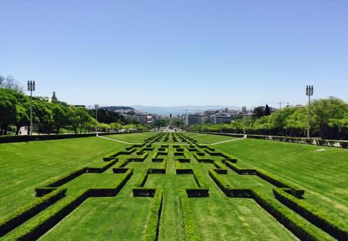 Maze Landscape Agriculture #140451