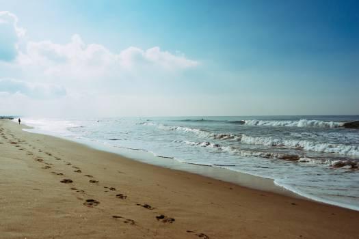 Beach Sand Shore #14057