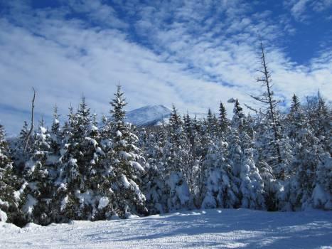 Snow Weather Winter #14073