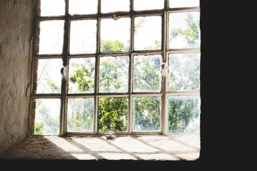Screen Covering Shoji Free Photo