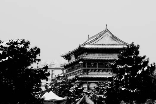 Temple Building Architecture #141209