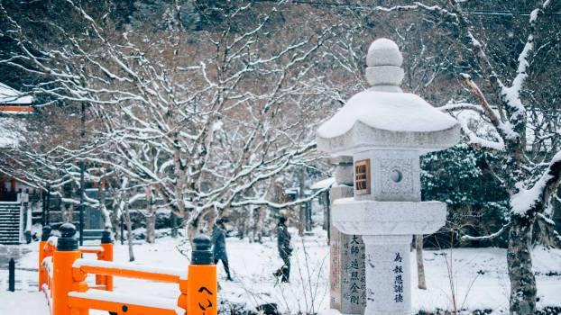 Snow Winter Cold #143394