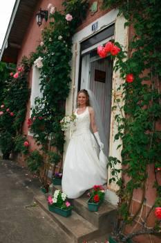 Groom Dress Bride #144625