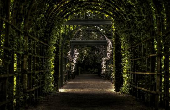 Arch Architecture Passage #14467