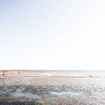 Boundary Beach Sea Free Photo