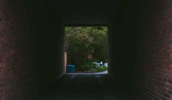 Screen Mirror Window screen #145515