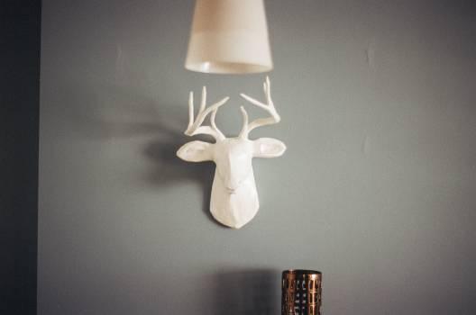 Lampshade Lamp Shade #14560