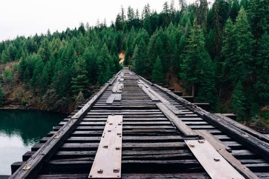 Track Transportation Bridge #14618
