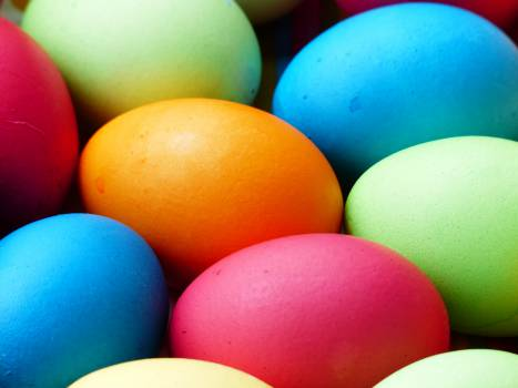 Egg Eggs Food #14631