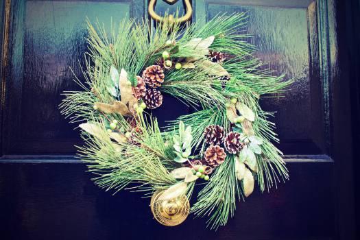 Lionfish Decoration Holiday #14703