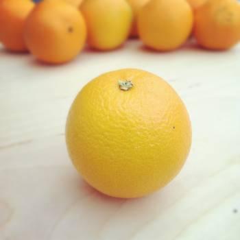 Citrus Fruit Orange #14811