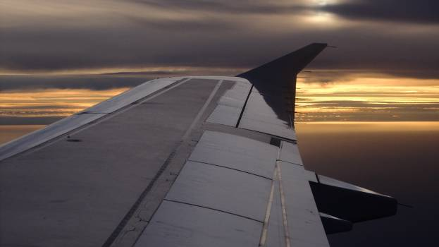 Wing Airfoil #148350