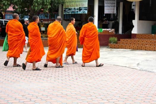 Monk People Religion Free Photo