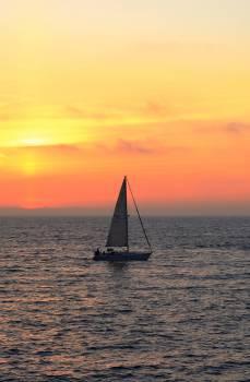 Sailboat Catamaran Vessel Free Photo