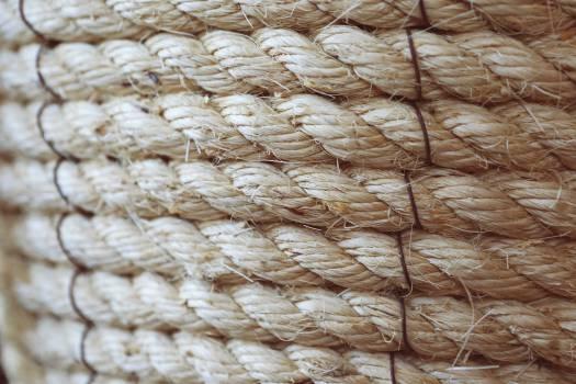 Texture Textured Pattern #15007