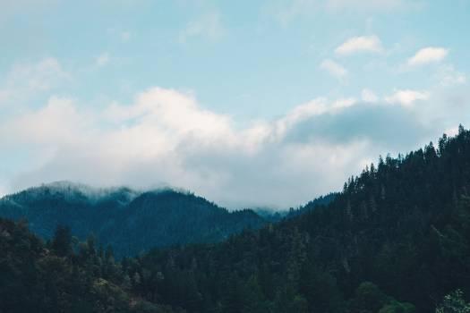 Mountain Range Landscape #15127