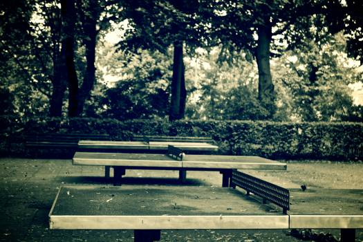 Park bench Bench Seat #15223