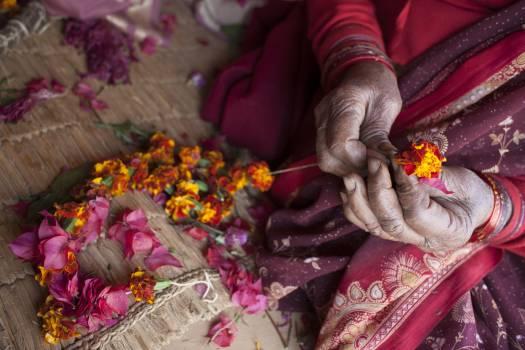 Bangle Flower Confectionery Free Photo