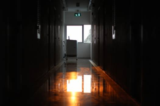 Floor Interior Cell Free Photo
