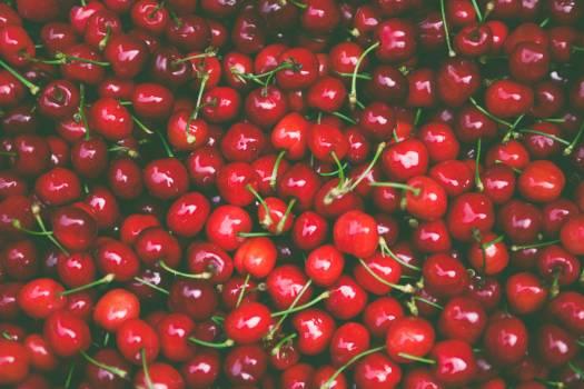 Cherry Berry Fruit Free Photo