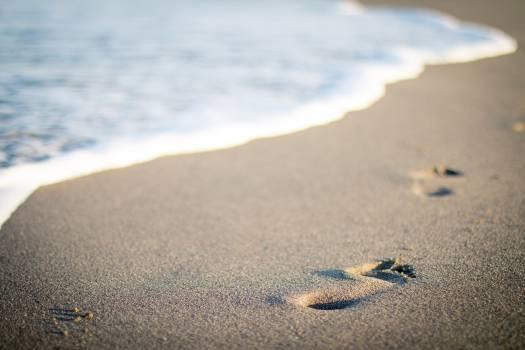Dune Sand Soil #15452