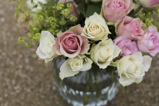 Bouquet Flower arrangement Decoration #154749
