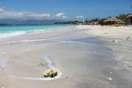 Sandbar Beach Bar Free Photo