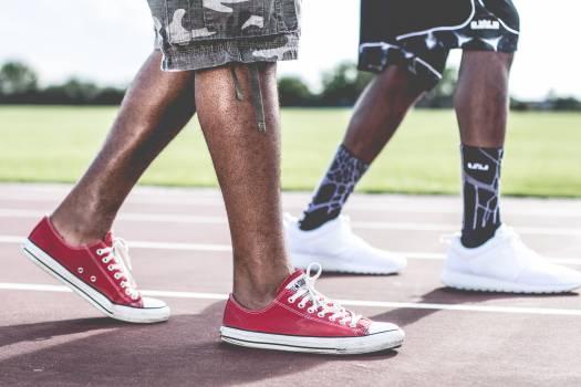 Shoe Footwear Lace Free Photo