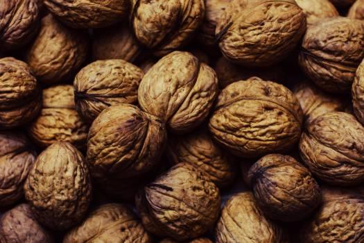 Nut Seed Food #15686