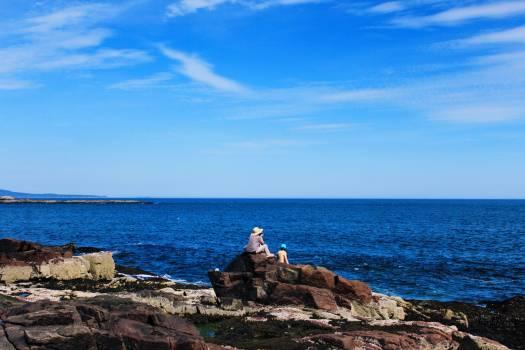 Breakwater Sea Cape Free Photo