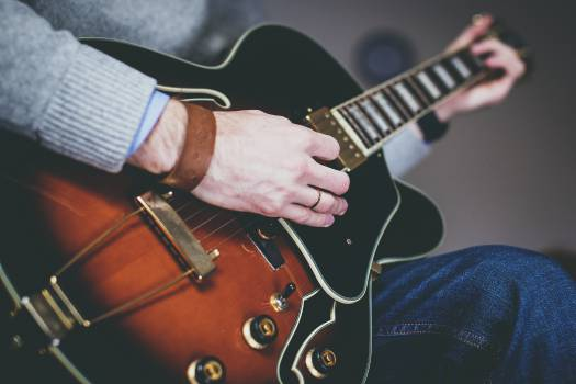 Guitar Stringed instrument Musical instrument #15731
