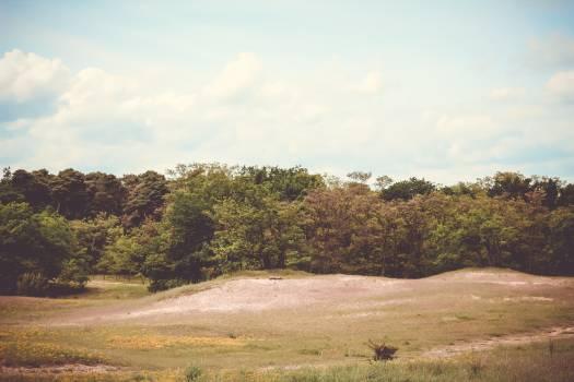 Plain Landscape Sky #157382