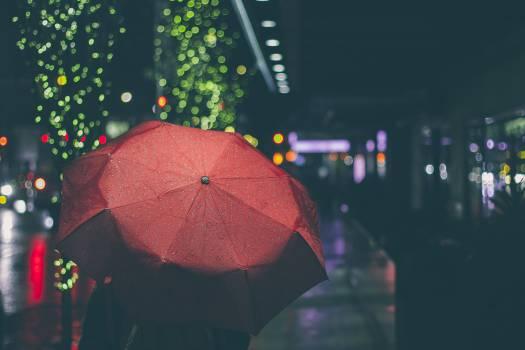 Umbrella Canopy Shelter #15765