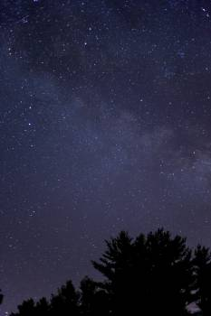 Star Sky Space #15891