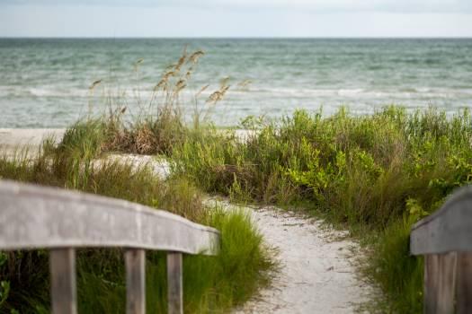 Shore Water Landscape Free Photo