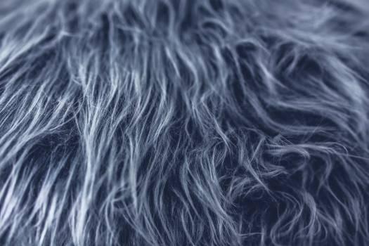 Wave Thread Wool Free Photo