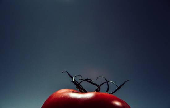 Hip Fruit Cherry #16184