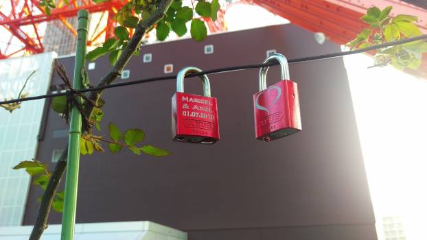Bag Container Lock Free Photo